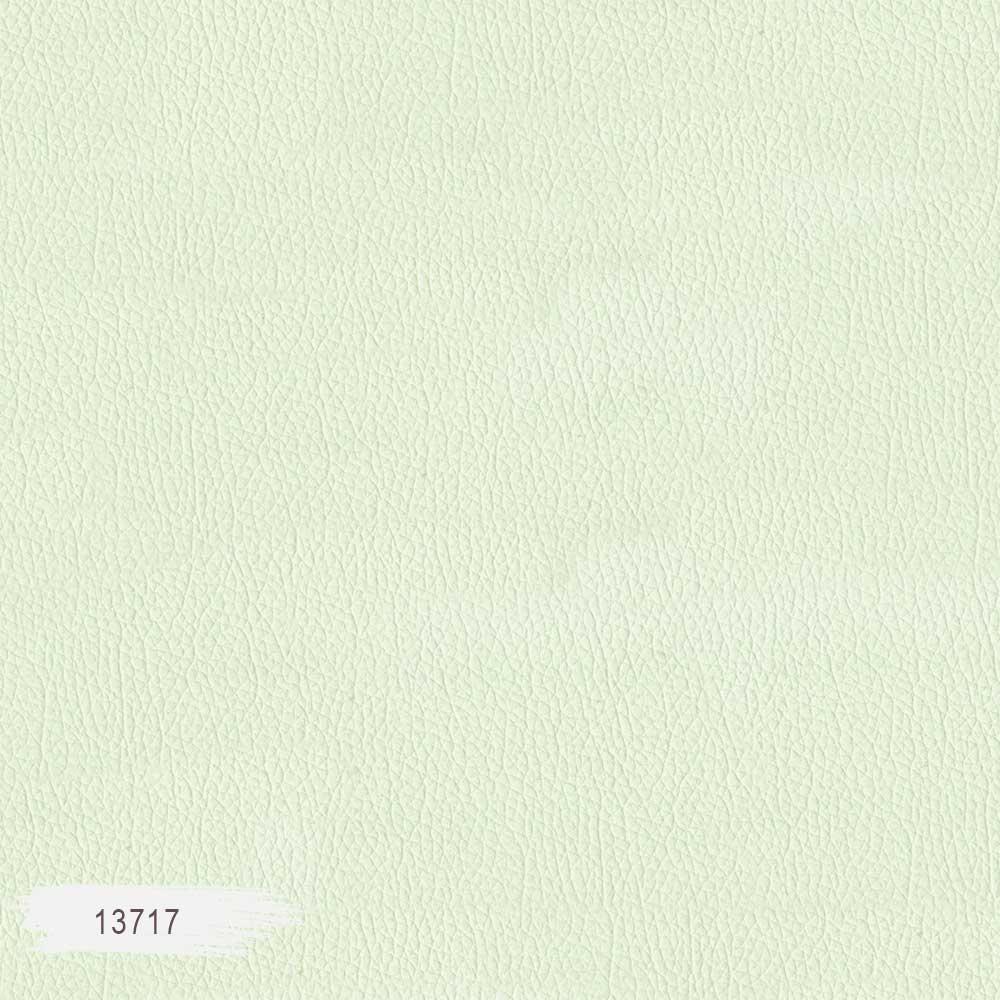 13717